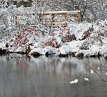 The pond, the snow, and the footbridge by Linda Crockett