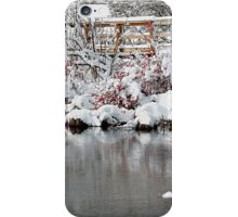 The pond, the snow, and the footbridge iPhone Case/Skin