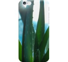 Aloe iPhone Case/Skin