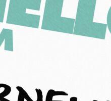 Hello, I'm Cornelius Sticker