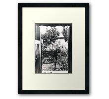 Outer Door Framed Print