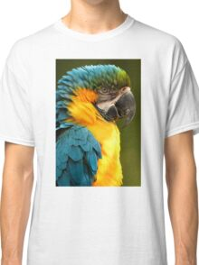 Macaw with Ruffled Feathers Classic T-Shirt