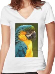 Macaw with Ruffled Feathers Women's Fitted V-Neck T-Shirt