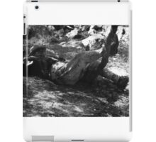 After The Hunt iPad Case/Skin