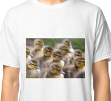Cute Ducklings Waddle By Classic T-Shirt