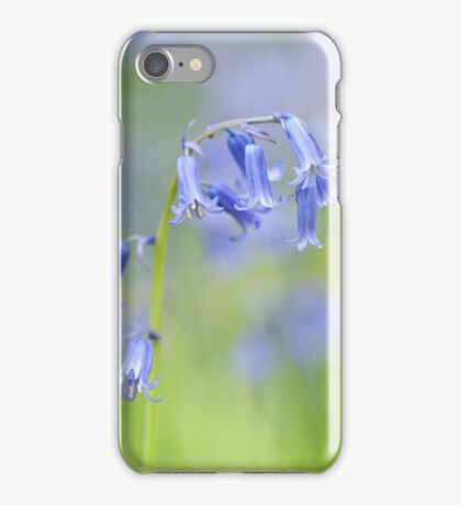 Bluebell Woodland  iPhone Case/Skin