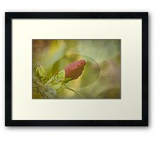 Artistic Hibiscus 2015-1 Framed Print