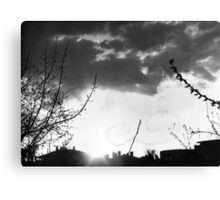Evening In The Neighborhood Canvas Print