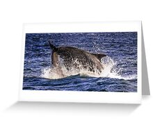 A splash in the Firth Greeting Card