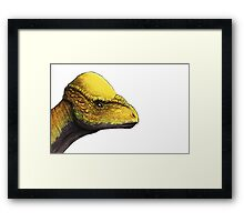 Prenocephale Framed Print