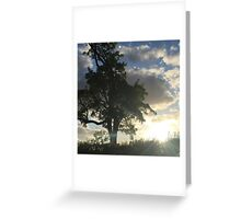Sunset and Silohuette Greeting Card