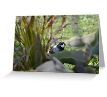 Magpie Hunter #JoBLING Greeting Card