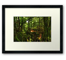 Puzzle Wood  Framed Print