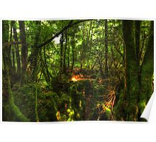 Puzzle Wood  Poster
