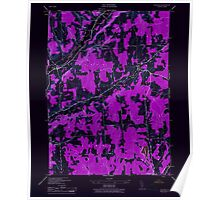New York NY Pitcher 129026 1944 24000 Inverted Poster