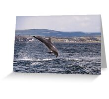Dolphin breaching Greeting Card