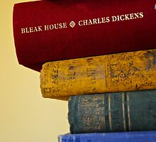 Books of an Avid Reader by Scissortails