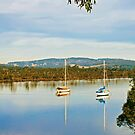 Along the Huon, Franklin by jayneeldred