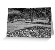 Infra Red Shadows Greeting Card