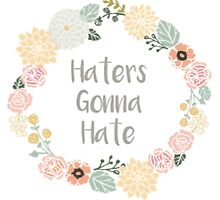 Haters Gonna Hate by vshen