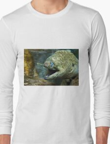 Not So Pretty Long Sleeve T-Shirt