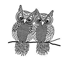 Owls in love black Photographic Print