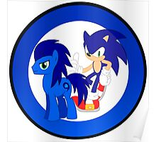 Sonic The Hedgehog & Sonic The Earthpony Poster