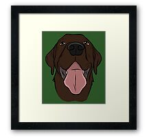 Happy Chocolate Lab  Framed Print