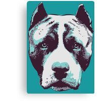 Blue Pit Bull  Canvas Print
