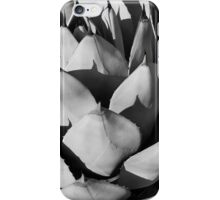 Agave on Agave iPhone Case/Skin