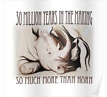 Rhino mother and baby (Southern White), charcoal conté drawing - 30 Million Years Poster