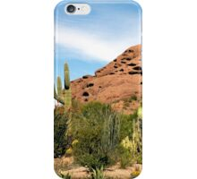 Desert Vista iPhone Case/Skin