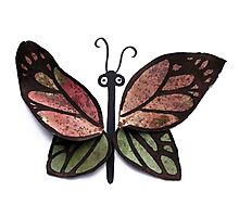 Leafy Butterfly Photographic Print