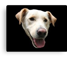 An Example of a Good Dog Canvas Print