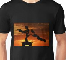 Zen Sunset Unisex T-Shirt
