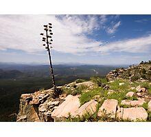 Rim View Photographic Print
