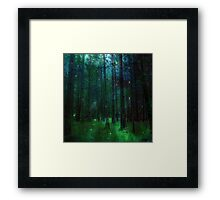 At Nightfall Framed Print