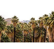 Palm Springs, CA Photographic Print