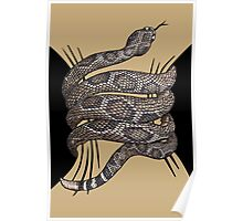 Rattlesnake Squeeze Poster