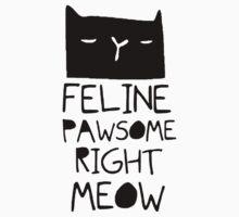 Cat Hair Feline Pawsome Kids Clothes