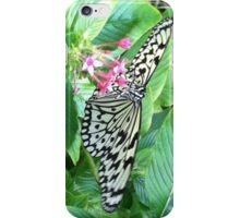 White and Black Butterfly iPhone Case/Skin