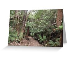 Fern Glade Track Greeting Card