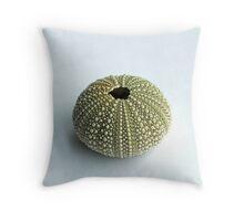 Sea Urchin Shell Throw Pillow