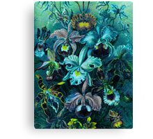 Ice Blue Vintage Flowers  Canvas Print