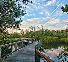 Out On The Boardwalk  by HHPhotographyFL