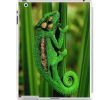 Cape Dwarf Chameleon II iPad Case/Skin