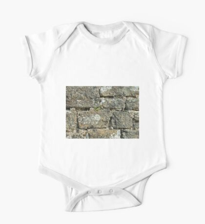 Stone Wall One Piece - Short Sleeve