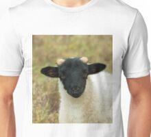 Black-Faced Sheep Lamb Unisex T-Shirt