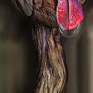 Snake Fruit Dragon by GolemAura