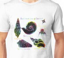 Hand drawn set of vintage seashells illustrations.  Unisex T-Shirt